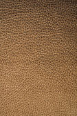 Texture of leather — 图库照片