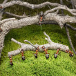 Team of ants carries log in rusty forest - Stock Photo