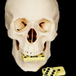 Skull eating dominoes — Stock Photo #2994085