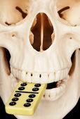 Dominó y cráneo humano — Foto de Stock