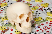 Skull on playing cards and money — Stock Photo