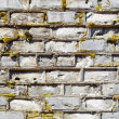 Stock Photo: Wall covered with moss with decayed bricks