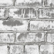 Wall from brick damaged by mould - Stock Photo