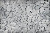 Deep large cracks on surface of plaster — Stock Photo