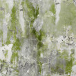 Old stone wall with greenish plaster — Photo #3448521