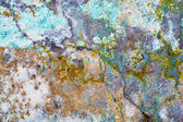 Rough grunge stone wall — Stock Photo