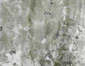 Betonové zdi špinavé zelené pozadí — Stock fotografie