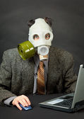 Amusing person has dressed gas mask and works with computer — Stock Photo