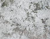 Grunge pintura de pared — Foto de Stock