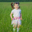 Happy child jumps on green grass in field — Stock Photo