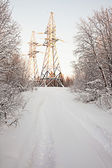 High-voltage support in winter wood — Stock Photo