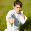 Royalty-Free Stock Photo: Young karateka on nature