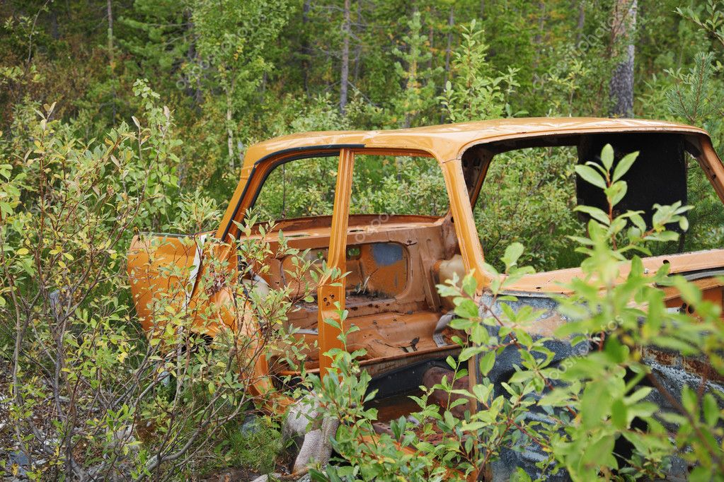 The rusty case of the old car thrown in wood  Stock Photo #3737204