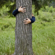 Man hugging tree — Stock Photo