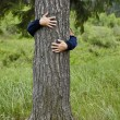Stock Photo: Man hugging tree