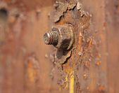 Metal nut rusted — Stock Photo