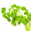 Parsley — Stock Photo #2786831