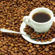 Coffee grain - Foto de Stock