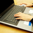 Hands typing on laptop — Stock Photo