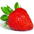 Strawberry - Foto de Stock