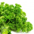 Parsley — Stock Photo #3753310