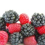 Blackberry and raspberry — Stock Photo