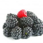 Blackberry and raspberry — Stock Photo #3794247