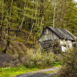 Old deserted house in the forest - Stock Photo