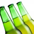 Three green beer bottles isolated over white background — Stockfoto