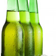 Three green beer bottles with ice isolated — Stock Photo #3708451