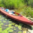 Kayak — Stockfoto #3590677