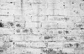 White brick wall — Photo