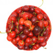 Sweet cherry fruits. — Stock Photo