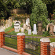 Stock Photo: Old Jewish Cemetery in Zhizhkov