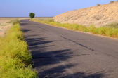 Motor Road Across Savanna — Stock Photo