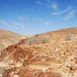 Desert Negev - Stock Photo