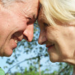 Elderly couple in the park — Stock Photo #3209362