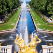 Fountain in Peterhof. St. Petersburg. Russia — Stock Photo