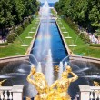 Royalty-Free Stock Photo: Fountain in Peterhof. St. Petersburg. Russia
