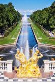 Fountain in Peterhof. St. Petersburg. Russia — Stock Photo
