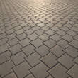 Paving slabs — Stock Photo #3045583