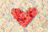 Heart of roses on a background of roses — Stok fotoğraf