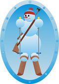 Deportes de invierno. — Foto de Stock
