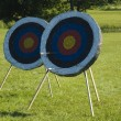 Stock Photo: Arrow targets