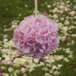 Stock Photo: Flower ball from hydrangea