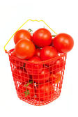 Tomatoes in a bucket — Stock Photo