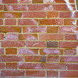 Wall of red bricks - Stockfoto