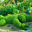 Topiary - Green crocodile — Stock Photo