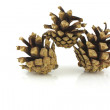 Stock Photo: Three pine cones