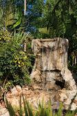 Decorative waterfall — Stock Photo